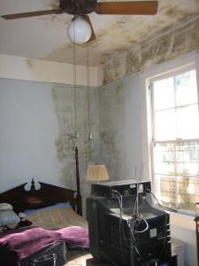Mouldy walls pic